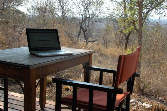 Séance de travail en safari (Afrique du Sud)