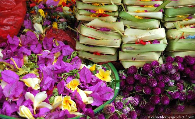 Fleurs de couleurs et canang sari