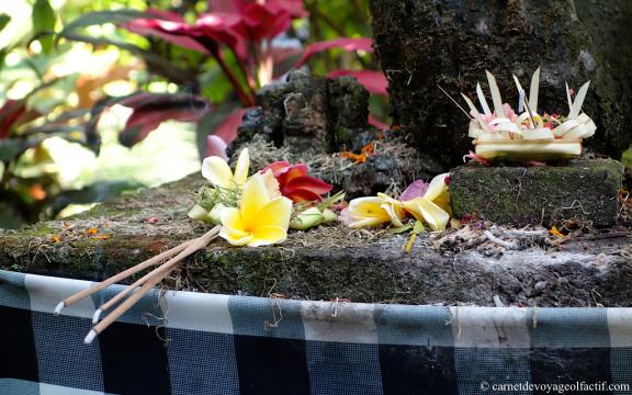 La fleur jaune contraste sur cet autel en pierre de lave
