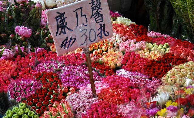 Les fleurs colorees du Flower Market de Mong Kok